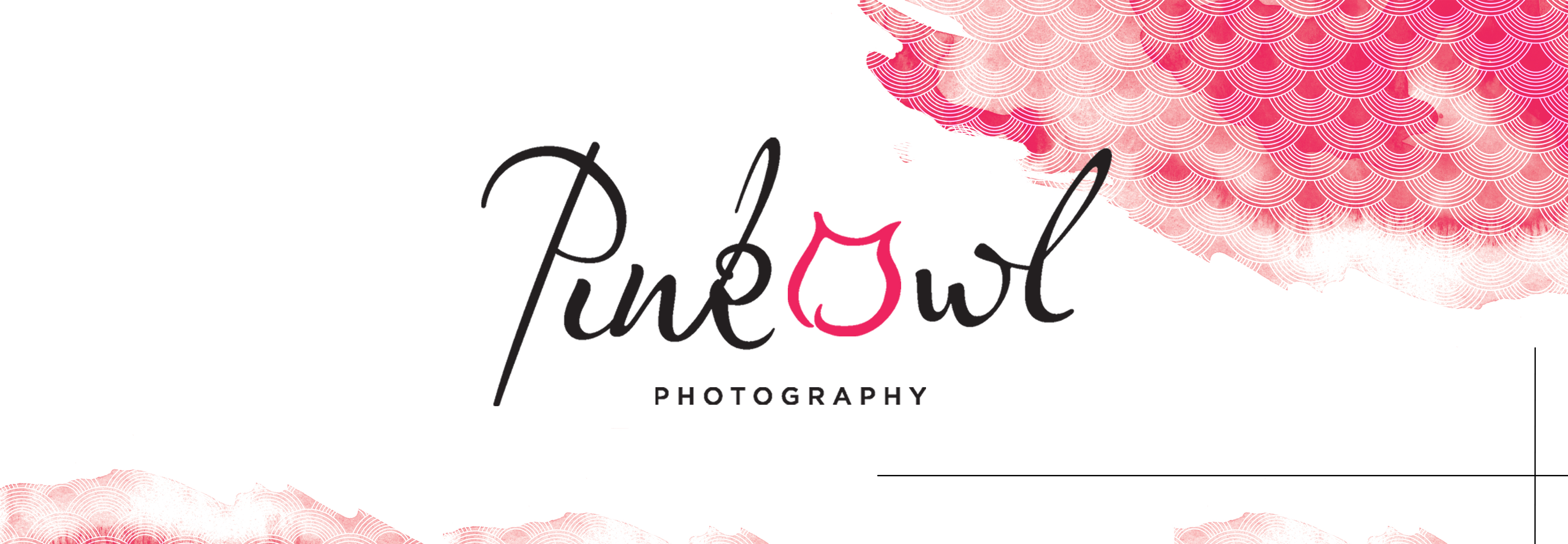 Raleigh Photographers | Chapel Hill | Louisville | Pink Owl Photography